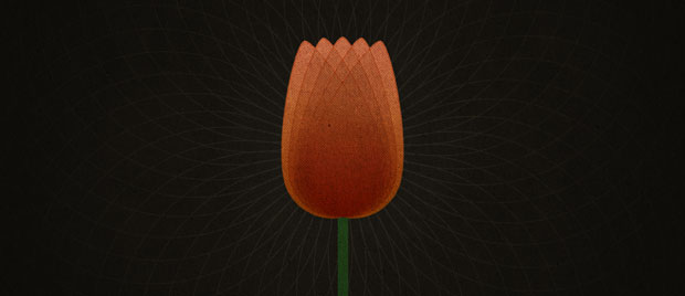 TULIP-and-Reformed-Theology_620